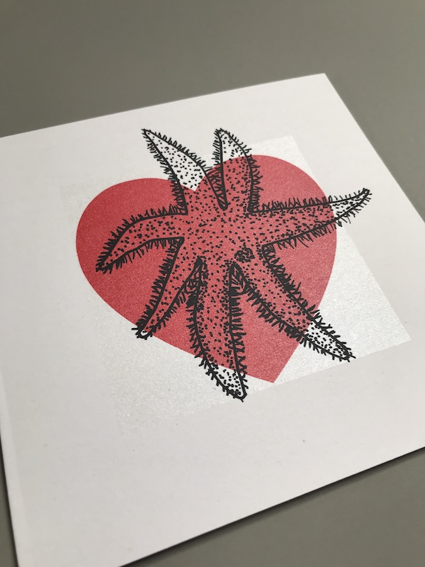 starfish card 2
